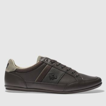 Lacoste Dark Brown CHAYMON Trainers