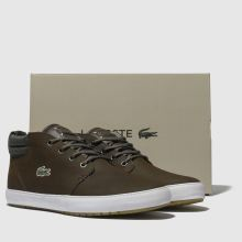 dc08692f8ff2ad mens dark brown lacoste ampthill terra trainers