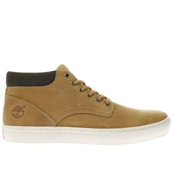 Timberland Natural Adventure 2.0 Cupsole Mens Boots