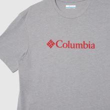 Columbia  Basic Logo T-shirt 1