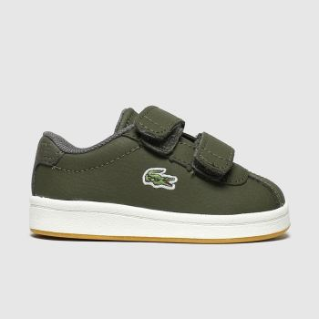 lacoste khaki masters trainers toddler