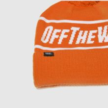 Vans off the wall beanie 1
