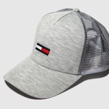Tommy Hilfiger tj trucker flag 1