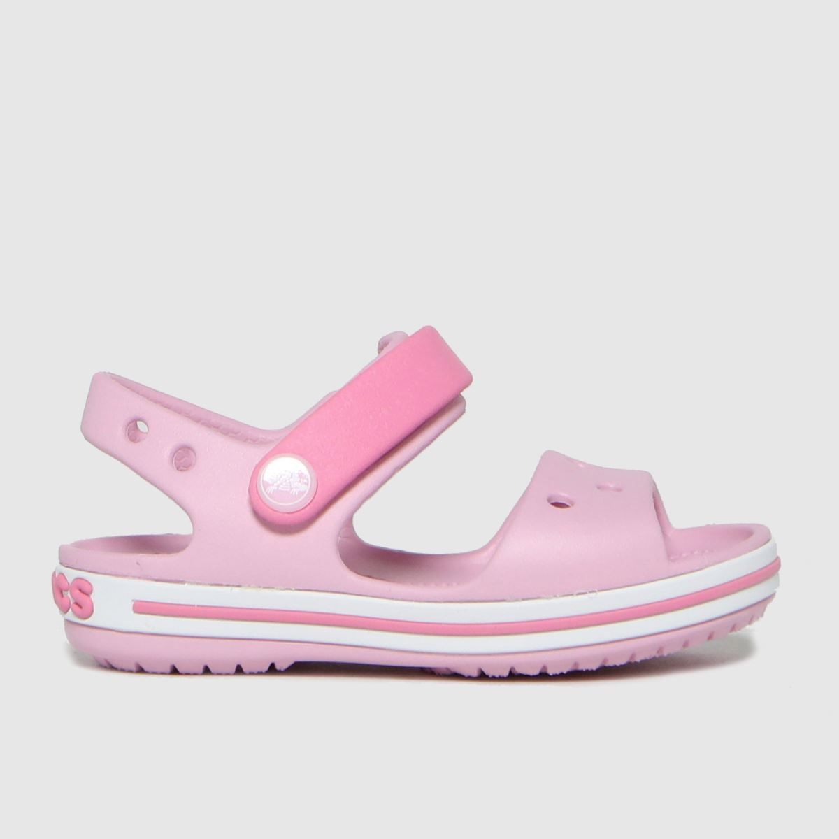 Crocs Purple Crocband SANDAL Toddler